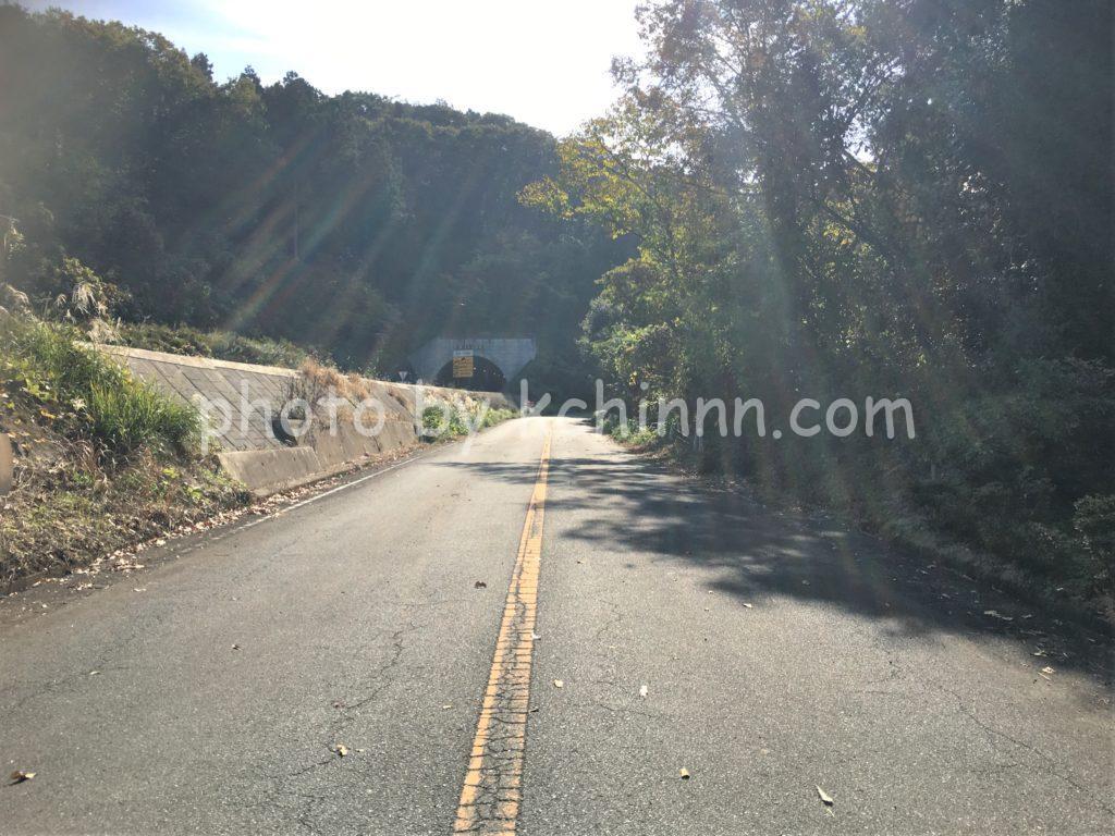 山居の前の道